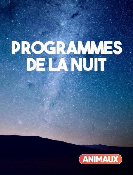 Animaux - Programmes de la nuit