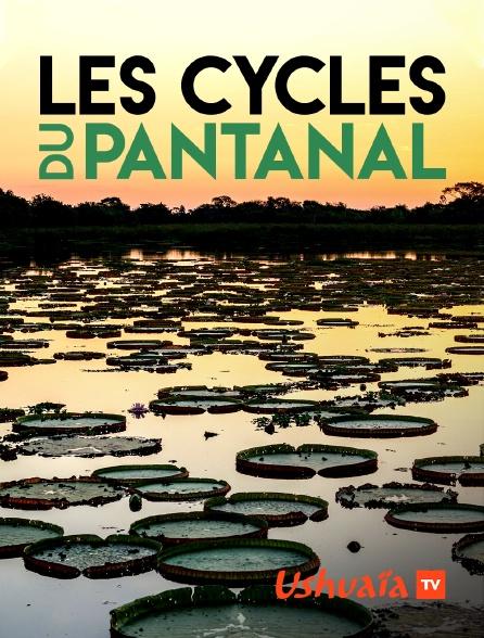 Ushuaïa TV - Les cycles du Pantanal