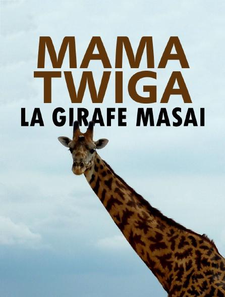 Mama Twiga, la girafe masaï