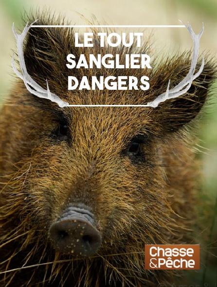 Chasse et pêche - Le tout sanglier : danger ?