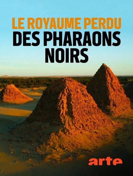 Arte - Le royaume perdu des pharaons noirs