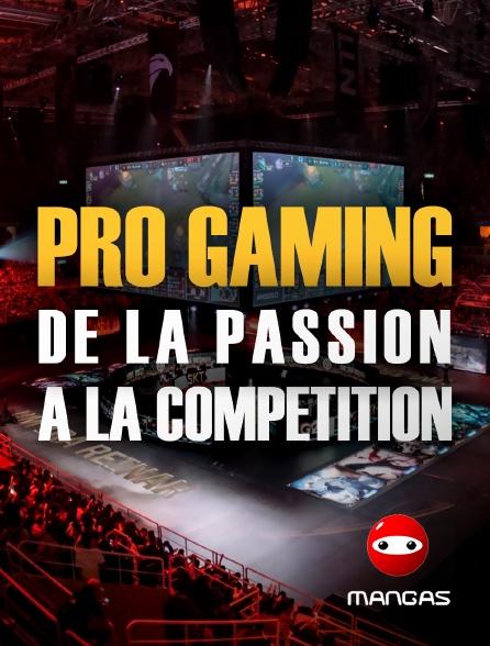 Mangas - Pro Gaming : de la passion à la compétition