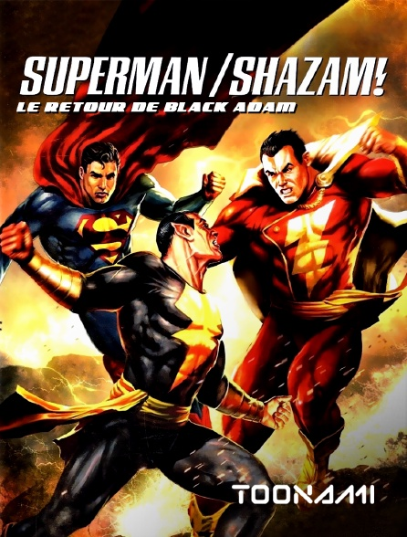 Toonami - Superman / Shazam ! : le retour de Black Adam
