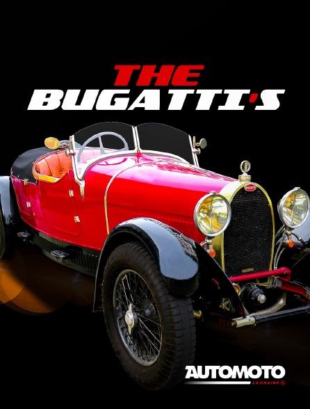 Automoto - The Bugatti's
