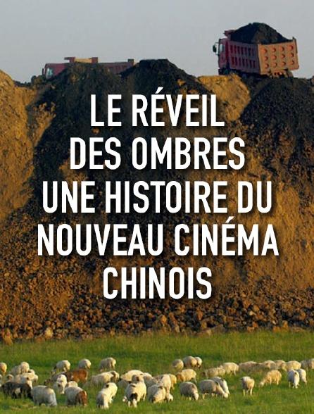 Le réveil des ombres, une histoire du nouveau cinéma chinois