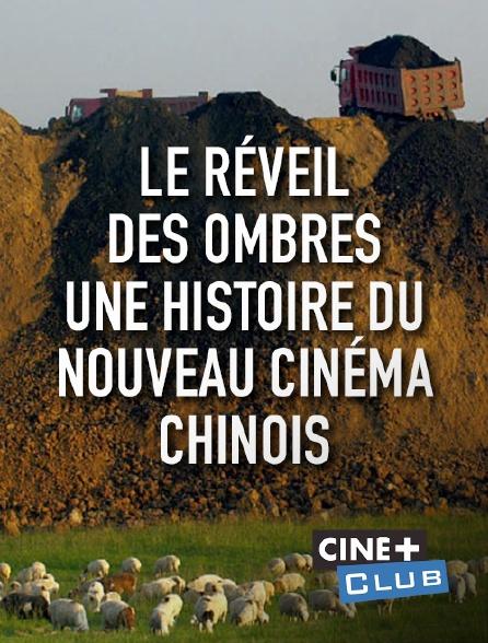 Ciné+ Club - Le réveil des ombres, une histoire du nouveau cinéma chinois