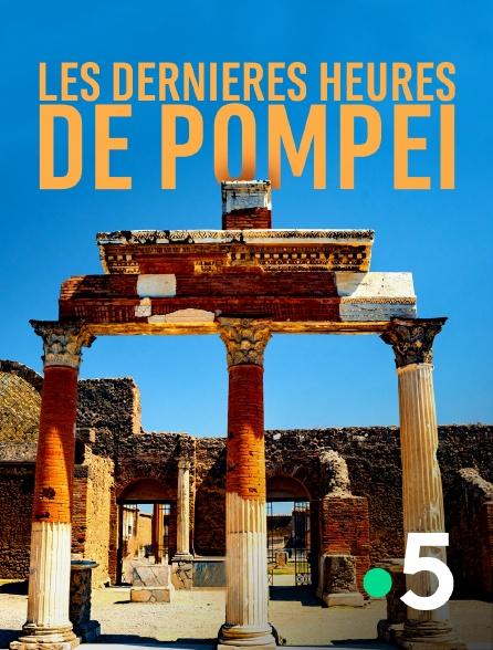 France 5 - Les dernières heures de Pompéi