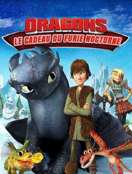 Dragons : le cadeau du furie nocturne