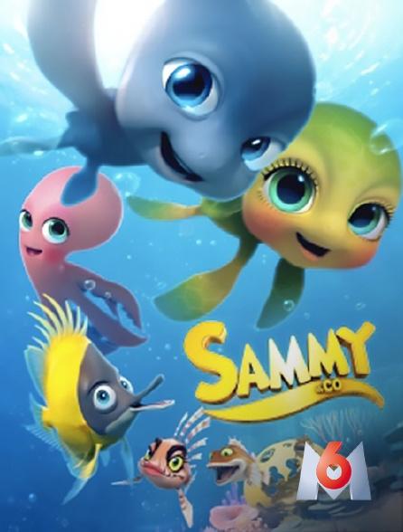 M6 - Sammy & Co