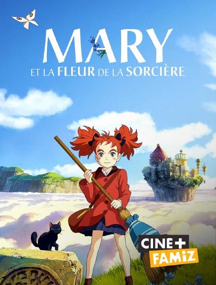 Ciné+ Famiz - Mary et la fleur de la sorcière
