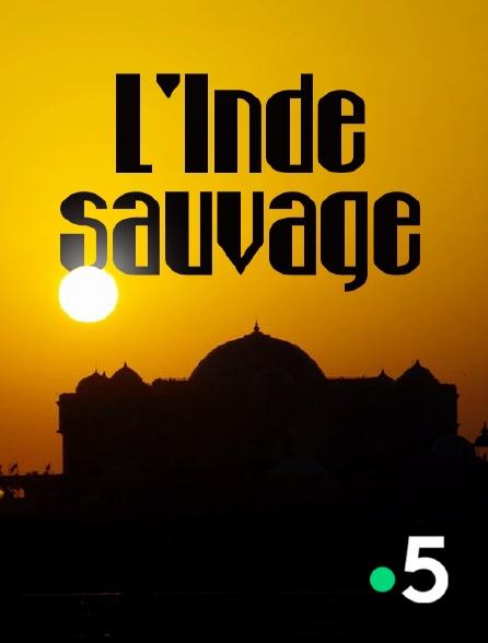 France 5 - L'Inde sauvage