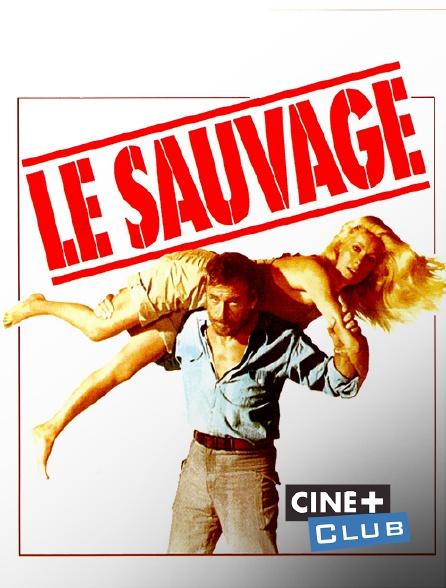 Ciné+ Club - Le sauvage