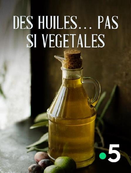 France 5 - Des huiles... pas si végétales