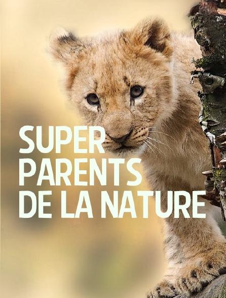 Super parents de la nature