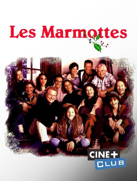 Ciné+ Club - Les marmottes