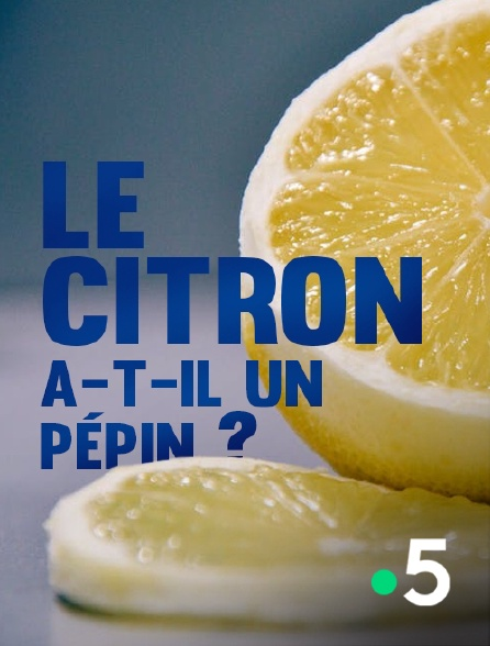 France 5 - Le citron a-t-il un pépin ?