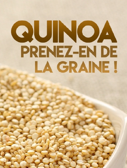 Quinoa, prenez-en de la graine !