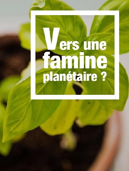 Vers une famine planétaire ?