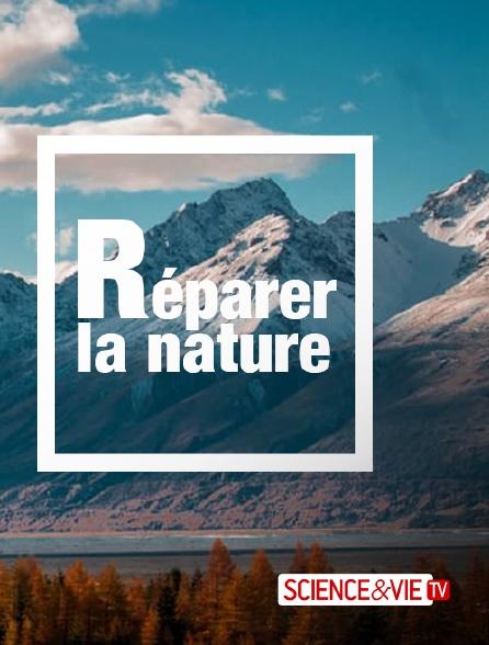 Science et Vie TV - Réparer la nature