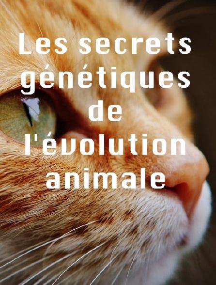 Les secrets génétiques de l'évolution animale