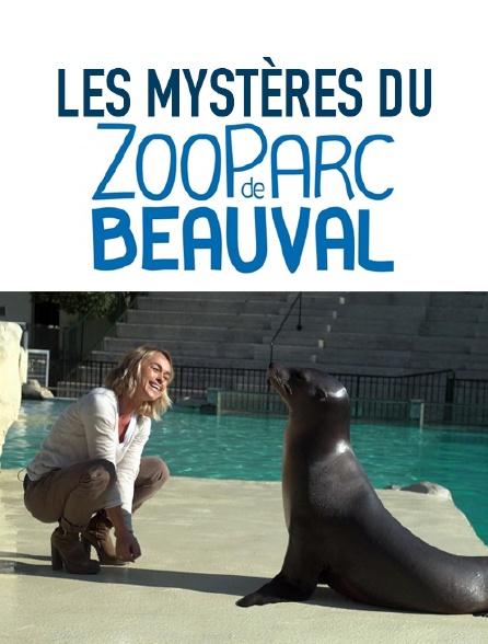 Dans les secrets du zoo de Beauval