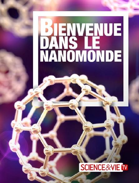 Science et Vie TV - Bienvenue dans le nanomonde