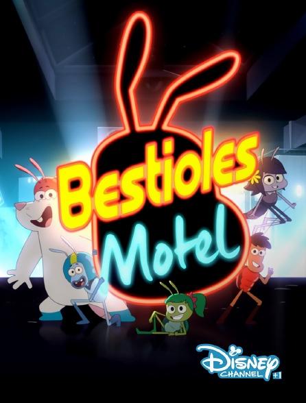 Disney Channel +1 - Bestioles Motel