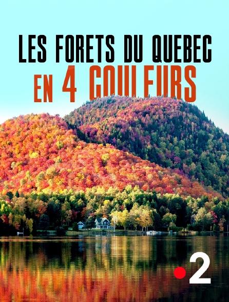 France 2 - Les forêts du Québec en 4 couleurs