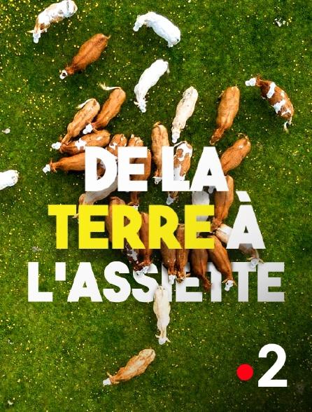 France 2 - De la terre à l'assiette