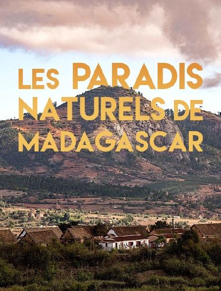 Les paradis naturels de Madagascar