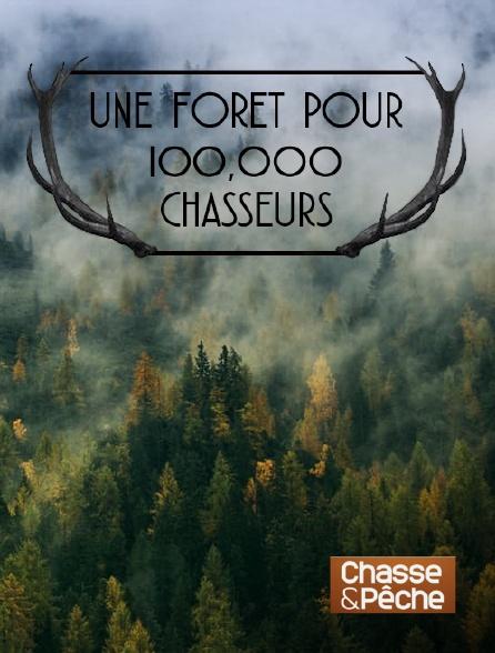 Chasse et pêche - Une forêt pour 100 000 chasseurs