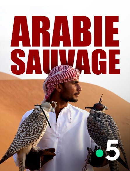 France 5 - Arabie sauvage