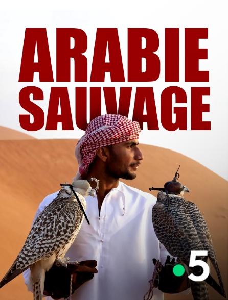 France 5 - Arabie sauvage