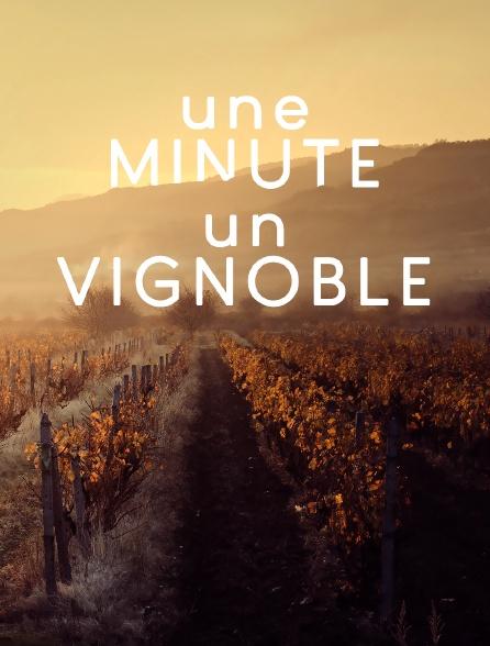 Une minute, un vignoble