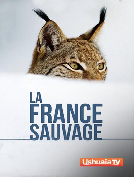 Ushuaïa TV - La France sauvage