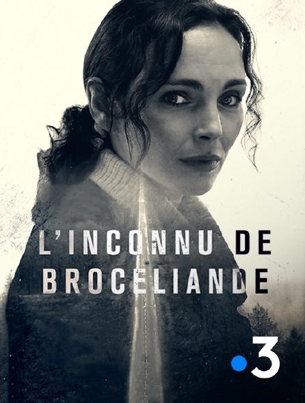 France 3 - L'inconnu de Brocéliande