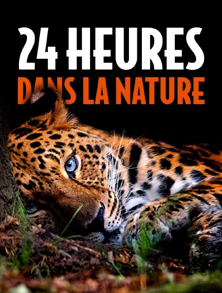 24 heures dans la nature