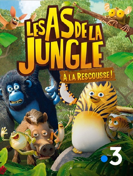 France 3 - Les as de la jungle à la rescousse
