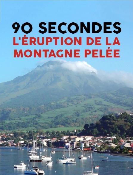 90 secondes : l'éruption de la montagne Pelée