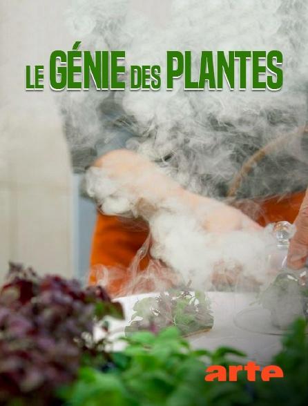Arte - Le génie des plantes