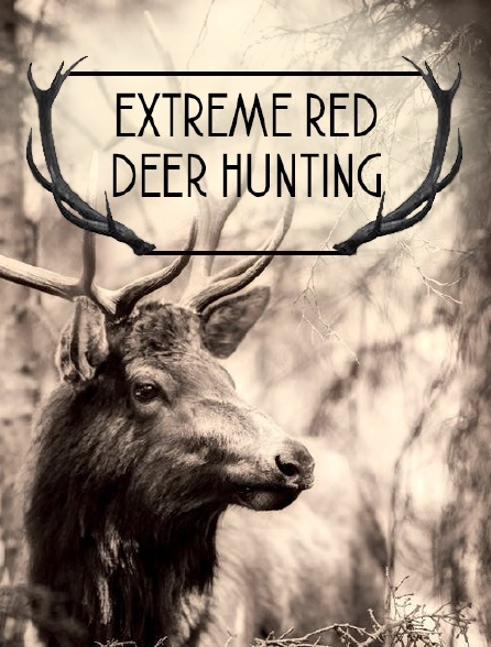 Extreme Red Deer Hunting