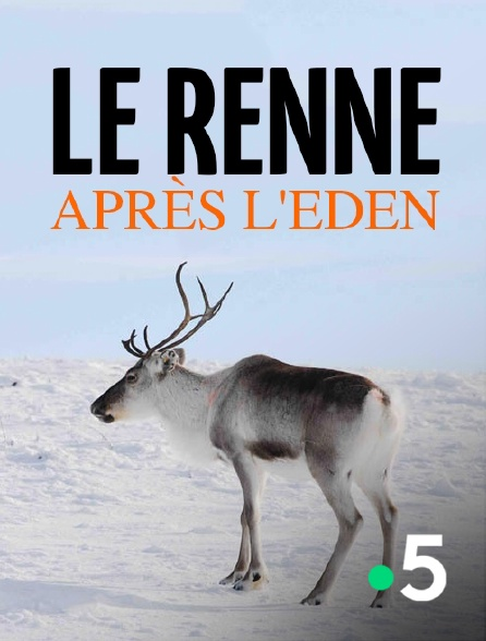 France 5 - Le renne après l'eden