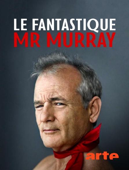 Arte - Le fantastique Mr Murray