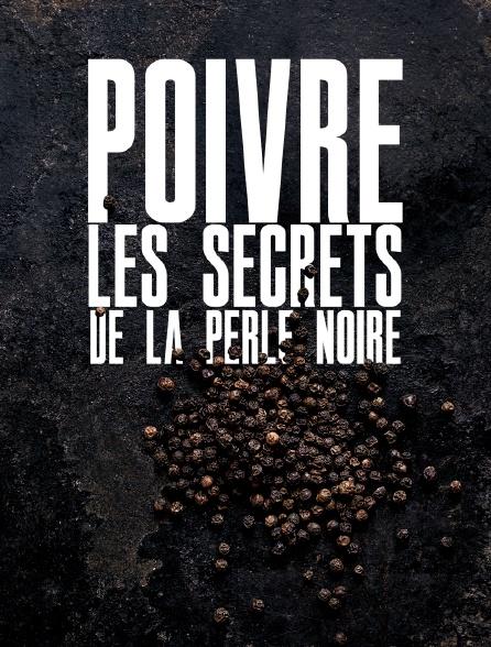 Poivre, les secrets de la perle noire