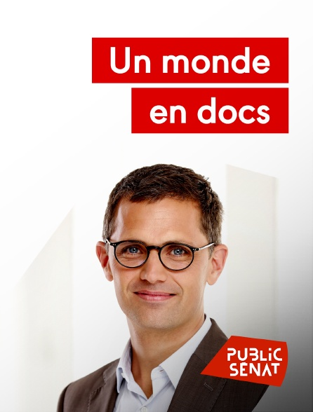 Public Sénat - Un monde en docs