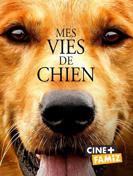 Ciné+ Famiz - Mes vies de chien