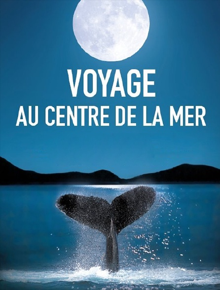 Voyage au centre de la mer