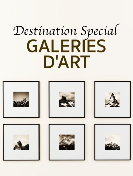 Destination Special : Galeries D'Art