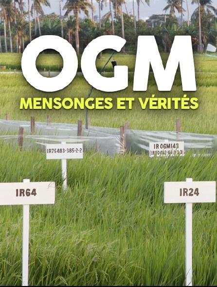 OGM : mensonges et vérités
