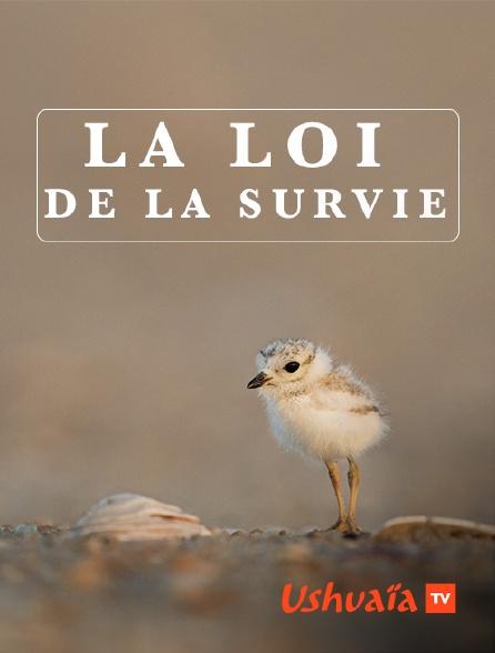 Ushuaïa TV - La loi de la survie